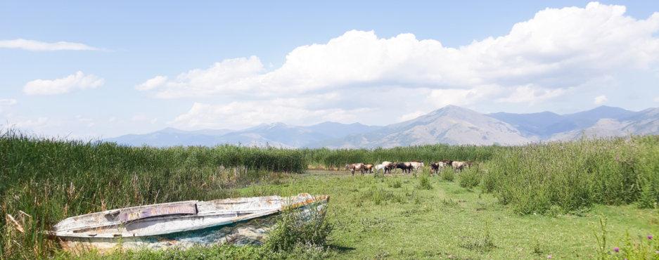 Road Trip στη Δυτική Μακεδονία